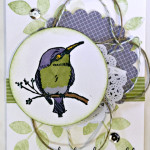 stampin up a happy thing stamp set bird blendabilities