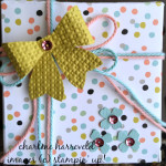 use stampin up designer series paper to wrap a present
