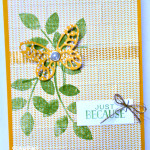 bold butterfly framelits dies stampin up