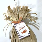september 2015 paper pumpkin kit stampin up treat bags