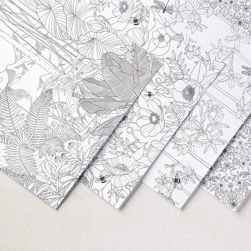 inside the lines designer series paper